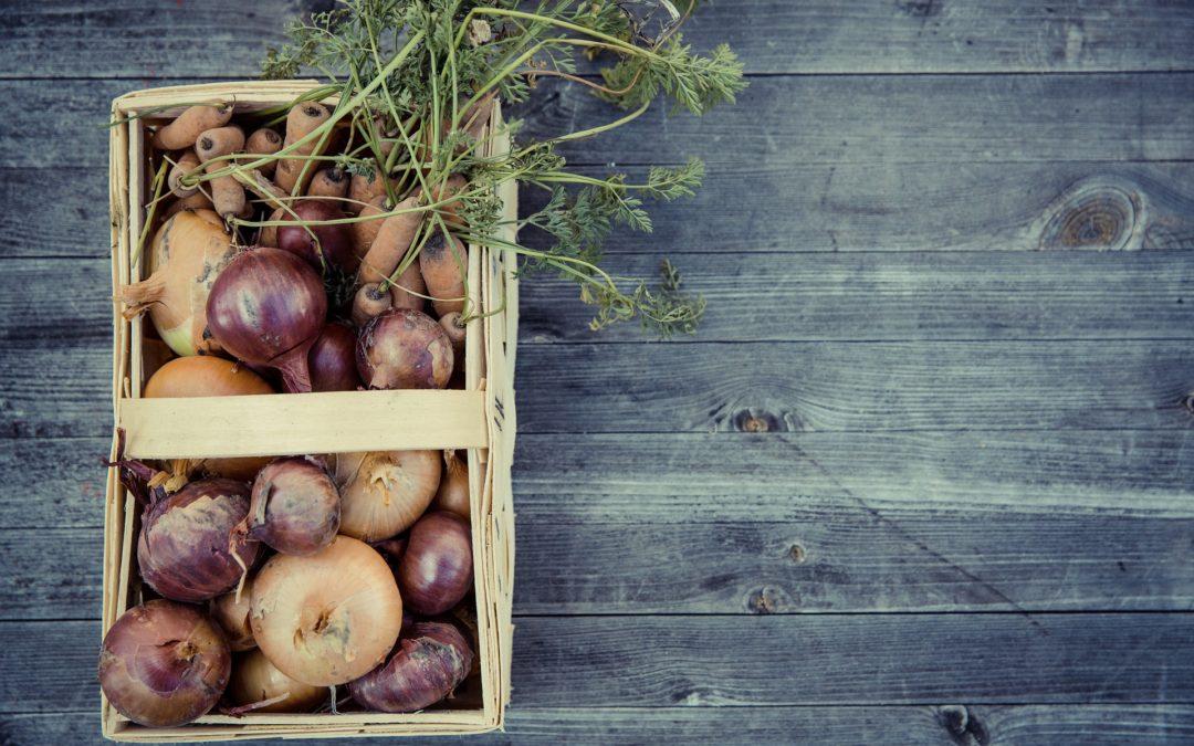 Circuit court, bio et local : marché à la ferme de la Patte d'Oie près d'Orléans