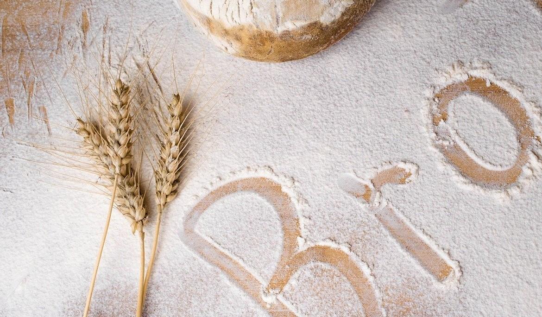 farine de blé, farine de petit épeautre, farine de sarrasin Ferme de la Patte d'Oie ©Gîte Zou la Galinette